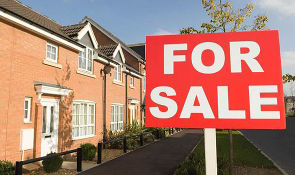 where to buy for sale signs